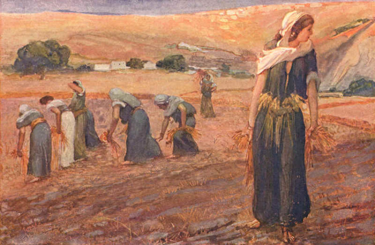 The Book of Ruth – Yoel Halevi