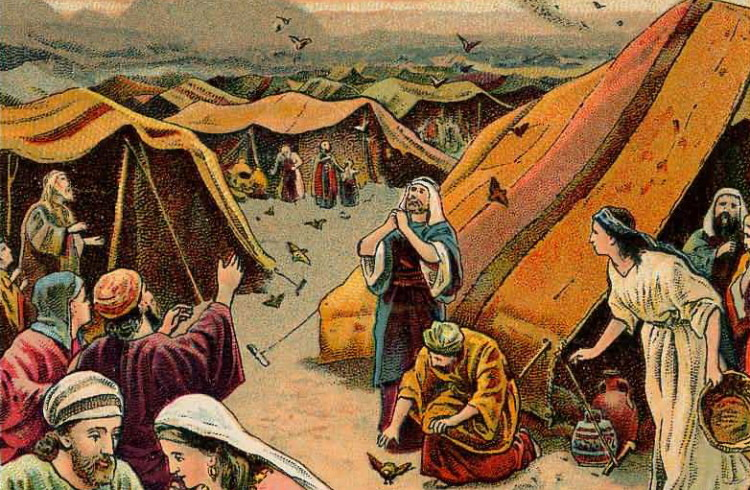 Nehemia Gordon & Keith Johnson – Pearls from the Torah Portion – Beha'alotcha – Numbers 8:1-12:16