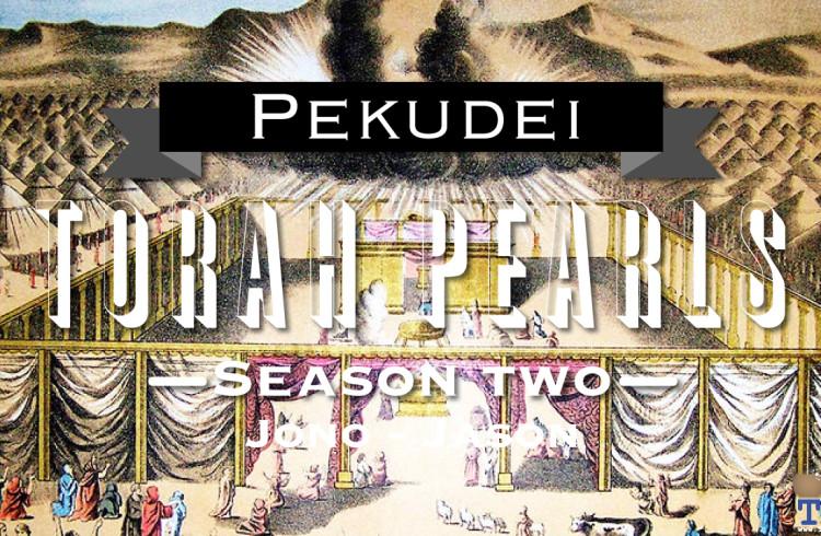 Torah Pearls – Season 2 – Pekudei