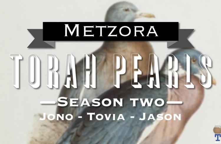Torah Pearls – Season 2 – Metzorah