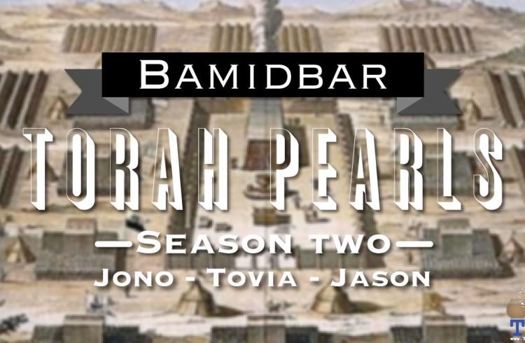 Torah Pearls – Season 2 – Bamidbar