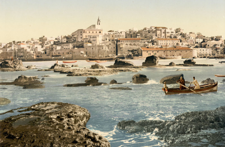 Jaffa Port & the Jonah Connection