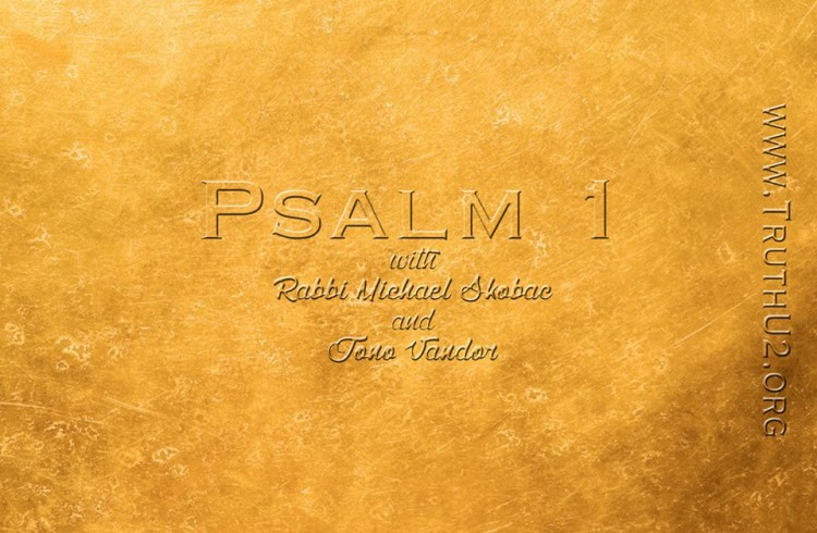 Exploring Psalms – An Introduction & Chapter 1