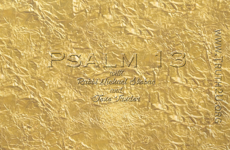 Exploring Psalms – Chapter 13 – Rabbi Michael Skobac