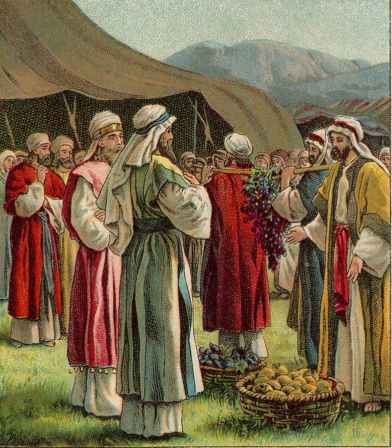 Torah Pearls – Shlach – Numbers 13:1-15:41 – Nehemia Gordon